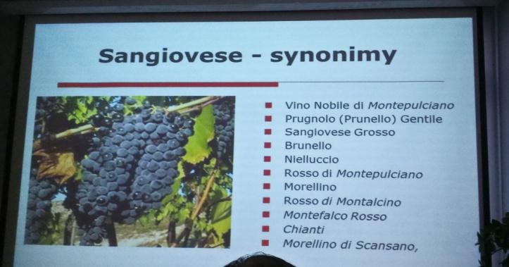 Sangiovese_2